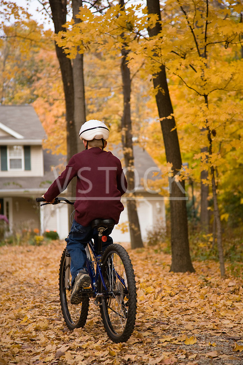 Boy riding bicycle towards home in forest