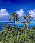 Bora Bora, French Polynesia   <br /> Coconut Palm trees (Cocos nucifera) above the tropical blue waters of Bora Bora lagoon framing Motu Piti uu Uta