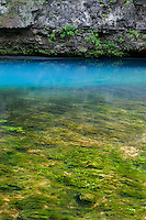 Blue Spring<br />
