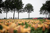 breakaway group<br /> <br /> stage 5: Eindhoven - Boxtel (183km)<br /> 29th Ster ZLM Tour 2015