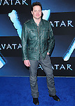 Brendan Frasier at The Twentieth Century Fox World Premiere of Avatar held at The Grauman's Chinese Theatre in Hollywood, California on December 16,2009                                                                   Copyright 2009 DVS / RockinExposures