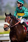Arcadia CA- April 06:  Battle Force with Corey Nakatani aboard wins the 2013 running of the Thunder Road Stakes in Arcadia, CA on April 6, 2013. (Alex Evers/ Eclipse Sportswire)