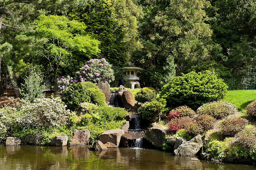 Shofuso Japanese garden, Fairmount Park,  Philadelphia, PA, Pennsylvania, USA