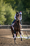 May 14, 2021 : Keepmeinmind gallops at Pimlico on Black-Eyed Susan Day at Pimlico Race Track in Baltimore, Maryland on May 14, 2021. Wendy Wooley/Eclipse Sportswire/Breeders' Cup/CSM
