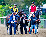 September 29, 2018 : Discreet Lover, ridden by Manny Franco, wins the Jockey Club Gold Cup on Jockey Club Gold Cup Day at Belmont Park on September 29, 2018 in Elmont, New York. Scott Serio/Eclipse Sportswire/CSM