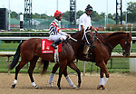 June 21, 2014:  Rousanne and jockey Shaun Bridgmohan in the post parade of the Debutante Stakes at Churchill, where she would finish third.  Owner David Ingordo, trainer Steve Asmussen. ©Mary M. Meek/ESW/CSM