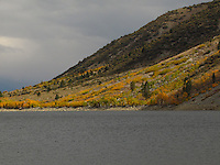 Fall colors climb up the slope from Lundy Lake in the Eastern Sierras.