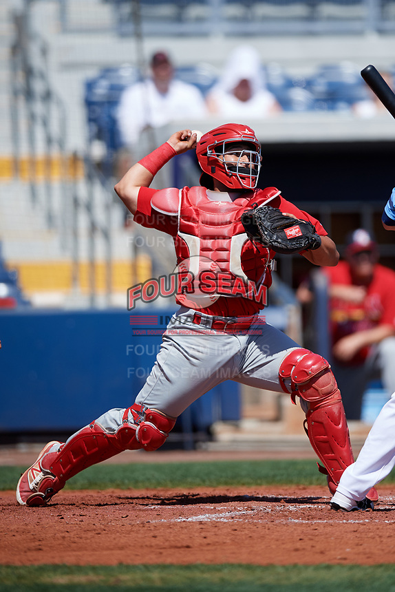 Palm Beach Cardinals catcher Jose Godoy (27) throws down to second base during a game against the Charlotte Stone Crabs on April 12, 2017 at Charlotte Sports Park in Port Charlotte, Florida.  Palm Beach defeated Charlotte 8-7 in ten innings.  (Mike Janes/Four Seam Images)