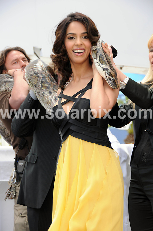 **ALL ROUND PICTURES FROM SOLARPIX.COM**.**WORLDWIDE SYNDICATION RIGHTS**.Malika Sherawat at the Hiss  photocall arrivals at the  Majestic Hotel Cannes Film festival in Cannes France..This pic: Malika Sherawat..JOB REF:11263       MSR    DATE: 14.05.2010.**MUST CREDIT SOLARPIX.COM OR DOUBLE FEE WILL BE CHARGED**.**MUST NOTIFY SOLARPIX OF ONLINE USAGE**.**CALL US ON: +34 952 811 768 or LOW RATE FROM UK 0844 617 7637**