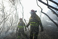 Firefighters work at the site of a wildfire in Fumaces, near Ourense on August 25, 2013. (c) Pedro ARMESTRE