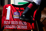 """DEL MAR, CA  AUGUST 25:   #1 Catalina Cruiser, ridden by Drayden Van Dyke, wins the Pat O'Brien Stakes (Grade ll), Breeders' Cup """"Win and You're In Dirt Mile Division"""" on August 25, 2018 at Del Mar Thoroughbred Club in Del Mar, CA.(Photo by Casey Phillips/Eclipse Sportswire/Getty ImagesGetty Images"""