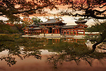 Colorful red sunset scenery of the Phoenix Hall, Amida hall or Hoo-do of Byodoin Buddhist temple amidst Jodoshiki teien, Pure Land garden pond visible thorugh tree branches. Uji, Kyoto Prefecture, Japan 2017 Image © MaximImages, License at https://www.maximimages.com