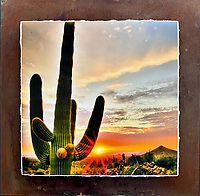"""Sonoran Sunset - Mixed Media - Arizona<br /> <br /> Each unique piece is made to order. If I have the piece in stock I can ship it in 2-3 days. If I don't have it in stock and it has to be made, it will ship in 1-2 weeks. Feel free to contact me at chey.rouse@gmail.com before you order if you need the piece ASAP. <br /> <br /> The photograph is printed on a Silk photo paper, the edges of the photo are torn, photo is mounted to foam board, then I mount it to an 8""""x8"""" piece of rusted metal. The rust is unique on each piece...no two pieces are alike. PLEASE keep in mind that the rust on the piece(s) you receive may be slightly different than the photo. Each piece of metal is sealed after it is done """"rusting"""" and is titled, hand signed and, ready to hang. To see the detail for theses Mixed Media pieces please click on the 1st photo in this gallery. You will be able to see the detail of the torn paper edge as well as the back of the piece. Just click on the piece that you like in this Gallery and then click the GREEN """"BUY"""" button in the left hand corner to add it to your cart."""