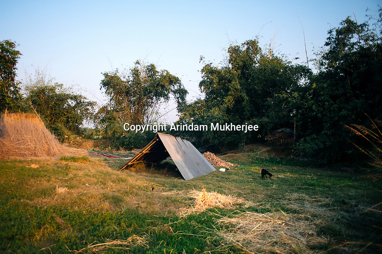 A tin shade roof kept on an open space at kulidihar village. When villagers can sense that erosion will start they try to move away their belongings to a safer ground. Murshidabad District. West bengal, India.