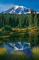 Mt. Rainier from Reflection Lakes<br /> Mt. Rainier National Park<br /> Cascade Range, Washington