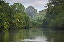 Dense rainforest surrounding estuary mouth. Corcovado National Park, Osa Peninsula, Costa Rica, May.