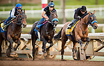 ARCADIA, CA - OCTOBER 29: Hoppertunity with Rafael Bejarano aboard (right) prepares for the Breeders' Cup Classic at Santa Anita Park on October 29, 2016 in Arcadia, California. (Photo by Alex Evers/Eclipse Sportswire/Getty Images)