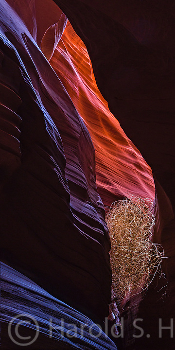 Antelope Canyon near Page, Arizona is a slot canyon.  Near the top, where the sun is brightest, the colors are bright yellow.  Closer to the bottom of the canyon the colors are orange and blue in the darkest areas.