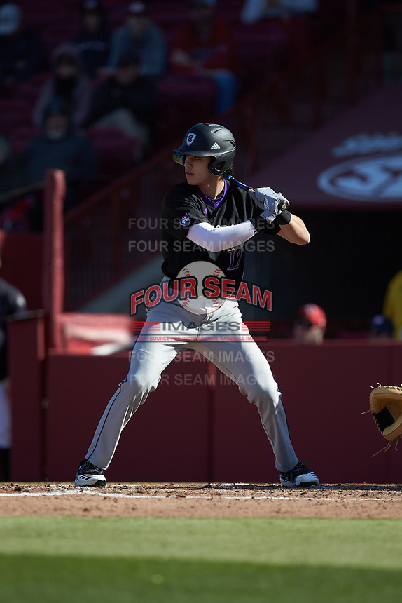 David Kale (12) of the Holy Cross Crusaders at bat against the South Carolina Gamecocks at Founders Park on February 15, 2020 in Columbia, South Carolina. The Gamecocks defeated the Crusaders 9-4.  (Brian Westerholt/Four Seam Images)