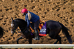 November 5, 2020: Peaceful, trained by trainer Aidan P. O'Brien, exercises in preparation for the Breeders' Cup Filly & Mare Turf at Keeneland Racetrack in Lexington, Kentucky on November 5, 2020. John Voorhees/Eclipse Sportswire/Breeders Cup/CSM