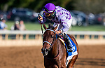 October 02, 2020:  Simply Ravishing with Luis Saez aboard wins The Darley Alcibiades at Keenland Racecourse, in Lexington, Kentucky on October 02, 2020.  Evers/Eclipse Sportswire/CSM
