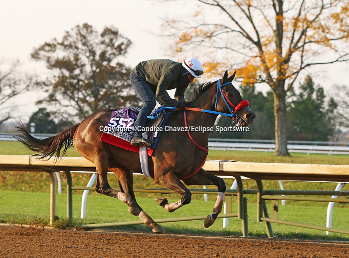 Come Dancing, trained by trainer Carlos Martin, exercises in preparation for the Breeders' Cup Filly & Mare Sprint at Keeneland Racetrack in Lexington, Kentucky on November 1, 2020. /CSM