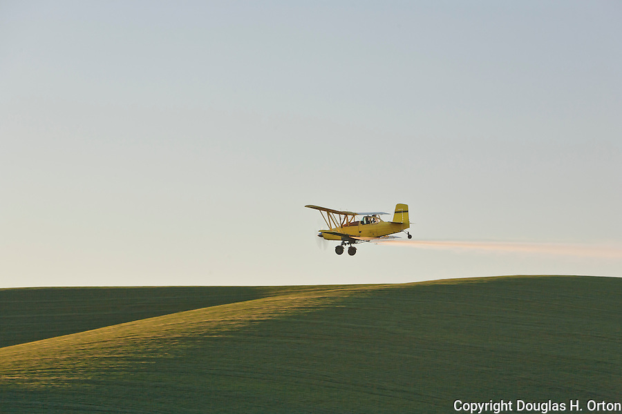 Late spring is the busy time for crop dusters in the Palouse wheat and lentil ranching area of Washington State.