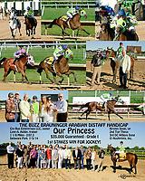 Our Princess winning The Buzz Brauninger Arabian Distaff Handicap (Gr. 1) at Delaware Park on 7/5/14