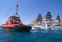 il veliero Amerigo Vespucci e rimorchiatore al porto di Genova