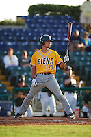 Siena Saints pinch hitter Josh DelSignore (20) at bat during a game against the Pittsburgh Panthers on February 24, 2017 at Historic Dodgertown in Vero Beach, Florida.  Pittsburgh defeated Siena 8-2.  (Mike Janes/Four Seam Images)