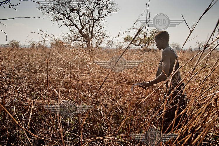 A South Sudanese refugee clears udergrowth on the plot of land allocated to her family at the Nyumanzi settlement. However, as her family had no machete in their NFI (non-food items) kit clearing their land has been made more difficult.