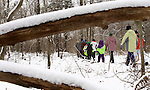 ANSONIA, CT -01 JANUARY 2006 -010106J04--- Local residents took to the trails at the Ansonia Nature Center on Sunday as part of the center's annual Healthy New Year's Hike. The hike was led by Martin Wigglesworth, a ranger and naturalist at the center. Among the items Wigglesworth pointed out during the hike were hawks and owls nests as well as animal tracks.  --  Jim Shannon Republican-American--  Martin Wigglesworth; Ansonia Nature Center; Healthy New Year's Hike are CQ