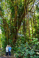 Two women stand in front of a banyan tree at Hawaii Tropical Botanical Garden near Onomea Bay in Papa'ikou near Hilo, Big Island of Hawai'i.