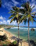 BRB, Barbados, Bathsheba: einsamer Strand an der Ostkueste | BRB, Barbados, Bathsheba: secluded beach at the east coast