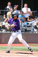 May 15, 2009:  Brian Deering of Niagara University at bat during a game at Demske Sports Complex in Buffalo, NY.  Photo by:  Mike Janes/Four Seam Images