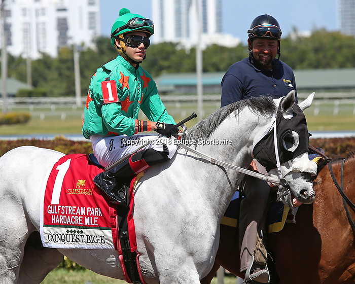HALLANDALE BEACH, FL - MARCH 31:  #1 Conquest Big E with jockey Jose Batista up in the post parade. Scenes from Florida Derby Day at Gulfstream Park on March 31, 2018 in Hallandale Beach, Florida. (Photo by Liz Lamont/Eclipse Sportswire/Getty Images)