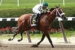 Mucho Macho Man with Mike Smith aboard pull a mild upset in the $350,000 Grade II Suburban Handicap, for 3-year olds & up, at 1 1/8 mile at Belmont Park.   Trainer Kathy Ritvo.  Owner Reeves Thoroughbred Racing.
