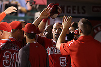 Albert Pujols #5 of the Los Angeles Angels is greeted by teammates after scoring against the Boston Red Sox at Angel Stadium on August 30, 2012 in Anaheim, California. Los Angeles defeated Boston 5-2. (Larry Goren/Four Seam Images)