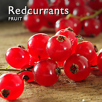 Redcurrants Fruit | Fresh Redcurrants Fruit Food Pictures, Photos & Images