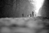 Paris-Roubaix 2013 RECON at Bois de Wallers-Arenberg..André Greipel (DEU)
