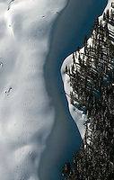 Ski tracks in Colorado Rockies, southwest of Aspen, Colorado.  Dec 28, 2013