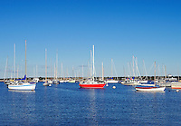 Boats in harbor, Vineyard Haven, Martha's Vineyard, Massachusetts, USA