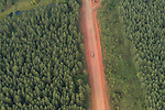 Aerial - road within the forest of Northern Division.
