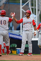 Williamsport Crosscutters outfielder Samuel Hiciano #7 greets Gabriel Lino #40 after hitting a home run during a game against the Jamestown Jammers on June 20, 2013 at Russell Diethrick Park in Jamestown, New York.  Jamestown defeated Williamsport 12-6.  (Mike Janes/Four Seam Images)