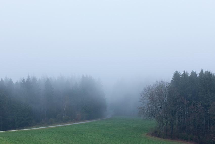 Europa, DEU, Deutschland, Hessen, Rhoen, Poppenhausen (Wasserkuppe), Typische Landschaft, Nebel, Dunst, Regen, Kategorien und Themen, Natur, Umwelt, Landschaft, Jahreszeiten, Stimmungen, Landschaftsfotografie, Landschaften, Landschaftsphoto, Landschaftsphotographie, Wetter, Wetterelemente, Wetterlage, Wetterkunde, Witterung, Witterungsbedingungen, Wettererscheinungen, Meteorologie, Wettervorhersage<br /> <br /> [Fuer die Nutzung gelten die jeweils gueltigen Allgemeinen Liefer-und Geschaeftsbedingungen. Nutzung nur gegen Verwendungsmeldung und Nachweis. Download der AGB unter http://www.image-box.com oder werden auf Anfrage zugesendet. Freigabe ist vorher erforderlich. Jede Nutzung des Fotos ist honorarpflichtig gemaess derzeit gueltiger MFM Liste - Kontakt, Uwe Schmid-Fotografie, Duisburg, Tel. (+49).2065.677997, ..archiv@image-box.com, www.image-box.com]