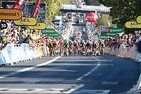 9th September 2020, Chatelaillon Plage to Poitiers, France; 107th Tour de France Cycling tour, stage 11; The peleton spints up an incline