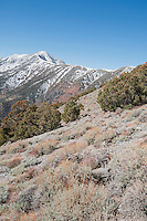 Telescope Peak in Death Valley National Park, California