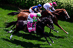 May 3, 2014: The field enters the first turn of the Churchill Distaff Turf Mile S. (Grade II) stakes on Kentucky Derby Day at Churchill Downs in Louisville, KY. Jon Durr/ESW/CSM