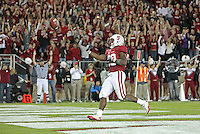 STANFORD, CA - November 6, 2010: The crowd cheers after Stepfan Taylor's 5 yard touchdown run during a 42-17 Stanford win over the University of Arizona, in Stanford, California.
