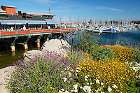Old Fisherman's Wharf and the Monterey Municipal Marina, Monterey, California
